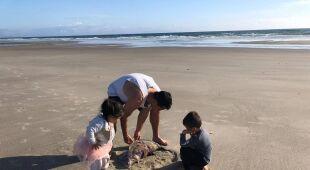 Meduza na plaży w Nowej Zelandii (autorzy: Eve i Adam Dickinson)